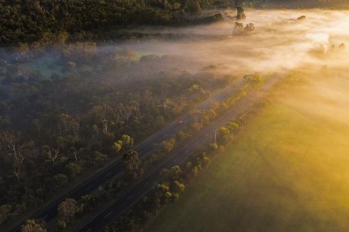 istock Aerial - Fog over Country Road in Victoria Australia on Sunrise 1172710388