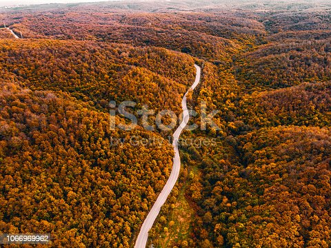 888361900 istock photo Aerial forest and road 1066969962