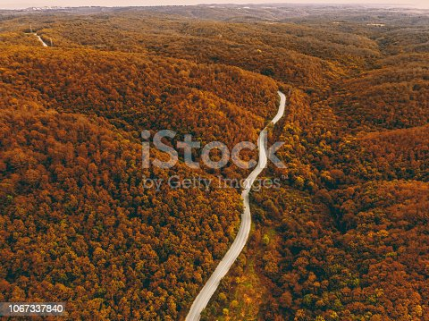 888361900 istock photo Aerial forest and road 1067337840