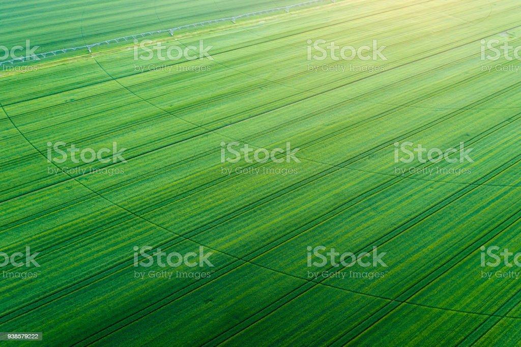 Luftaufnahme von Ackerland – Foto