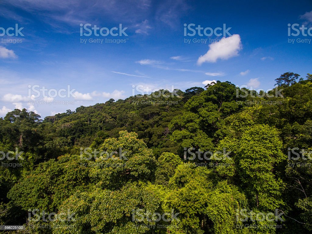Aerial island view of Koh Phangan foto royalty-free