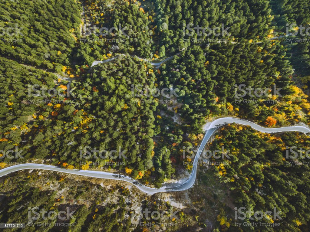 aerial landscape of winding road in the forest stock photo