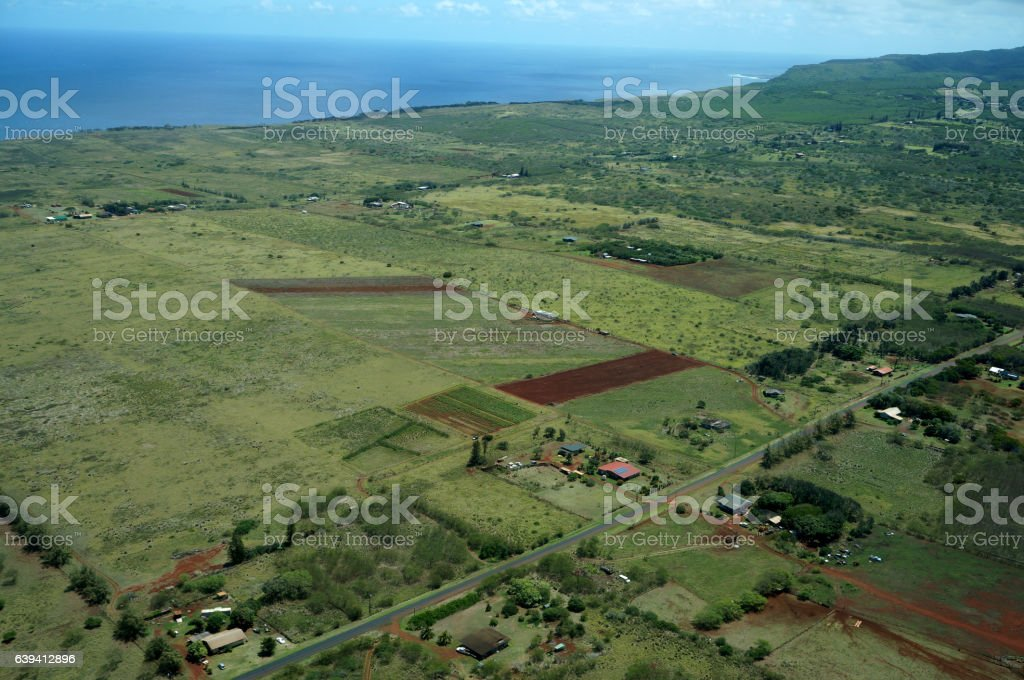 Aerial of Farm fields of different stages of age running stock photo