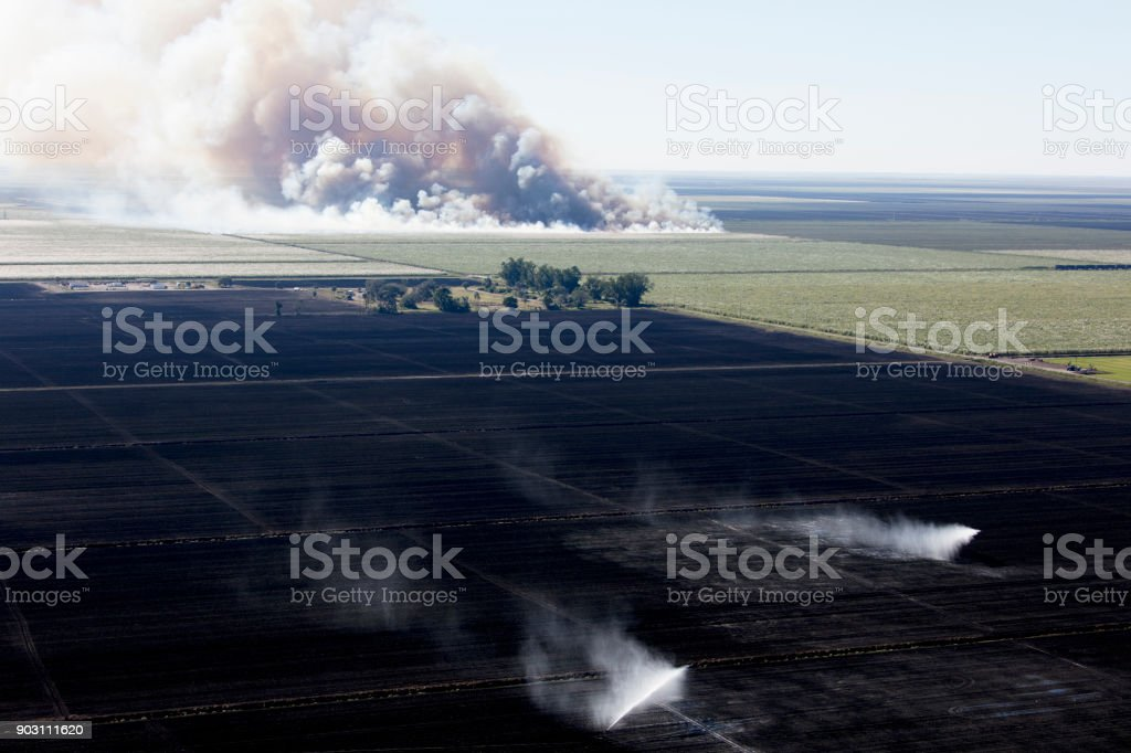 aerial of farming Sugarcane in south Florida stock photo