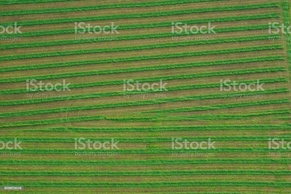 Aerial of Farmland stock photo