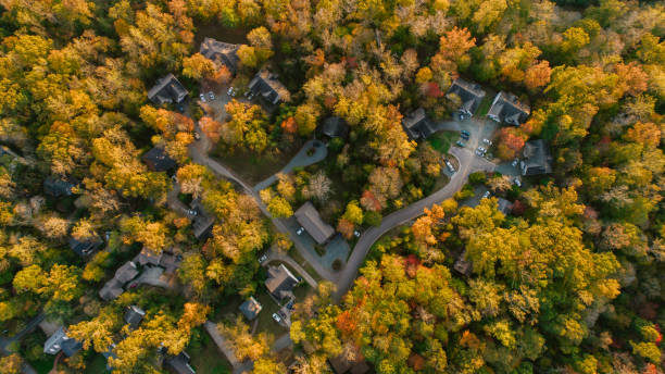 Aerial of Neighborhood in the Fall stock photo