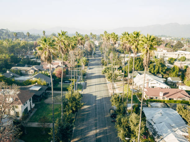 Aerial of Palm Tree Lined Street stock photo