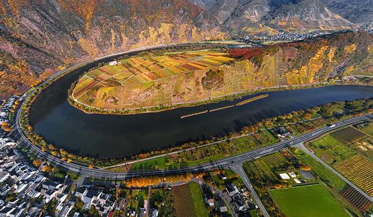 Aerial of Vineyards in Mosel loop near Bremm at autumn, Rhineland-Palatinate, Germany