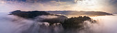 Aerial panorama of the coastal redwoods of Northern California poking out of the mist at sunrise.