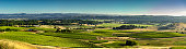 Aerial shot of lush green vineyards in Sonoma County, Northern California wine country.