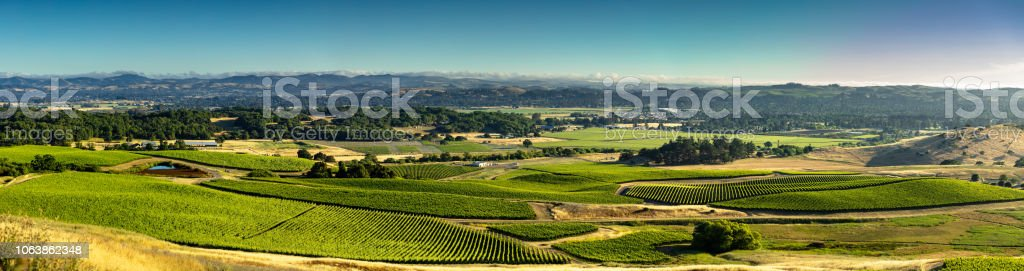 Aerial Panorama of Gorgeous Grape Growing Valley in California stock photo
