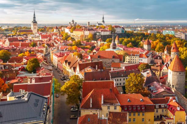 old town, tallinn, estonya hava panoraması - estonya stok fotoğraflar ve resimler
