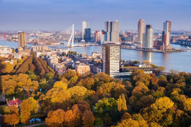 aerial panorama of rotterdam - rotterdam foto e immagini stock
