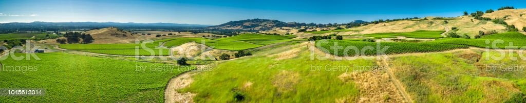 Aerial Panorama of Wine Growing Landscape in Sonoma County, CA stock photo