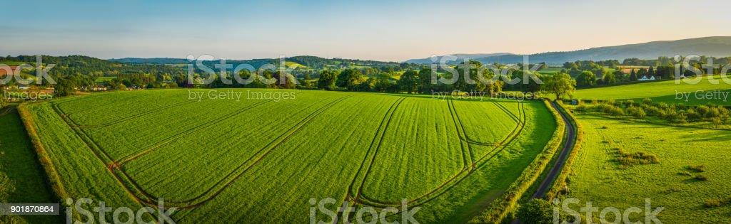 Aerial Panorama über gesunde grüne Ernte Feld hügeligem Ackerland Weide – Foto