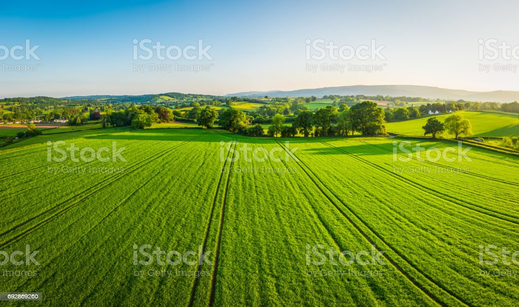 Aerial panorama over healthy green crops in patchwork pasture farmland Aerial view over healthy green summer crops in a picturesque rural landscape of patchwork pasture and country farms. Aerial View Stock Photo