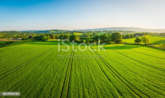 Aerial view over healthy green summer crops in a picturesque rural landscape of patchwork pasture and country farms.