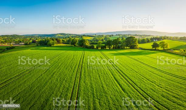 Photo of Aerial panorama over healthy green crops in patchwork pasture farmland