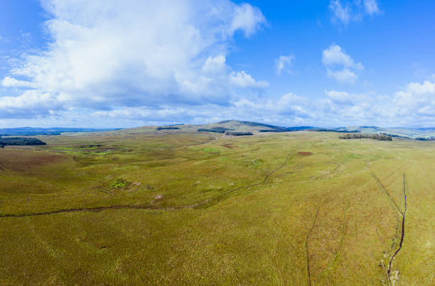 Aerial panoramic view of remote open Scottish countryside on a bright summer day The view from a drone of uncultivated Scottish countryside.  Inn the distance on the hills are wind turbines. The location is in Dumfries and Galloway, south west Scotland. The panorama was created by merging several images. johnfscott stock pictures, royalty-free photos & images