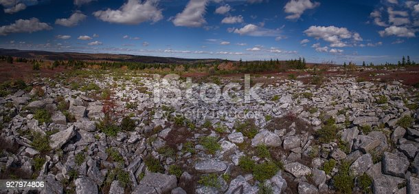 istock Aerial Panoramic View of the Dolly Sods Wilderness in West Virginia's Monongahela State Park in the Fall 927974806