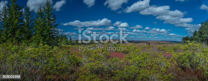 istock Aerial Panoramic View of the Dolly Sods Wilderness in West Virginia's Monongahela State Park in the Fall 928003358