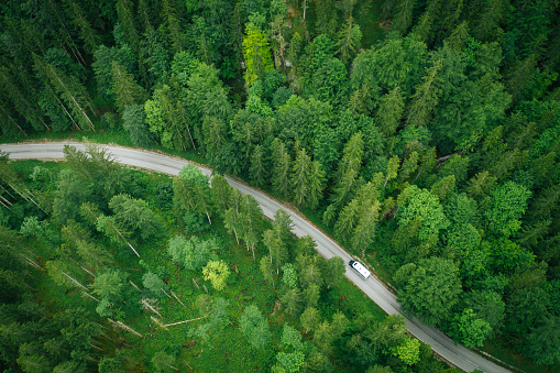 Mountainous road and lush forest