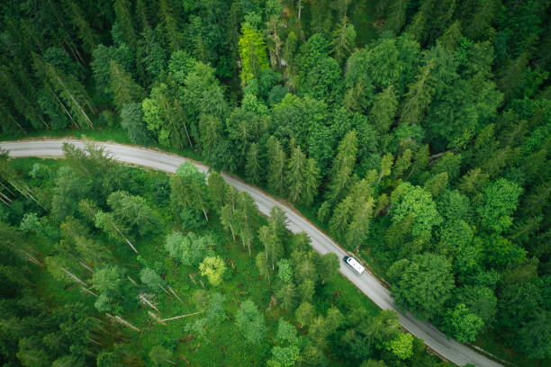 Aerial perspective of a motor home driving down a road through the forest stock photo