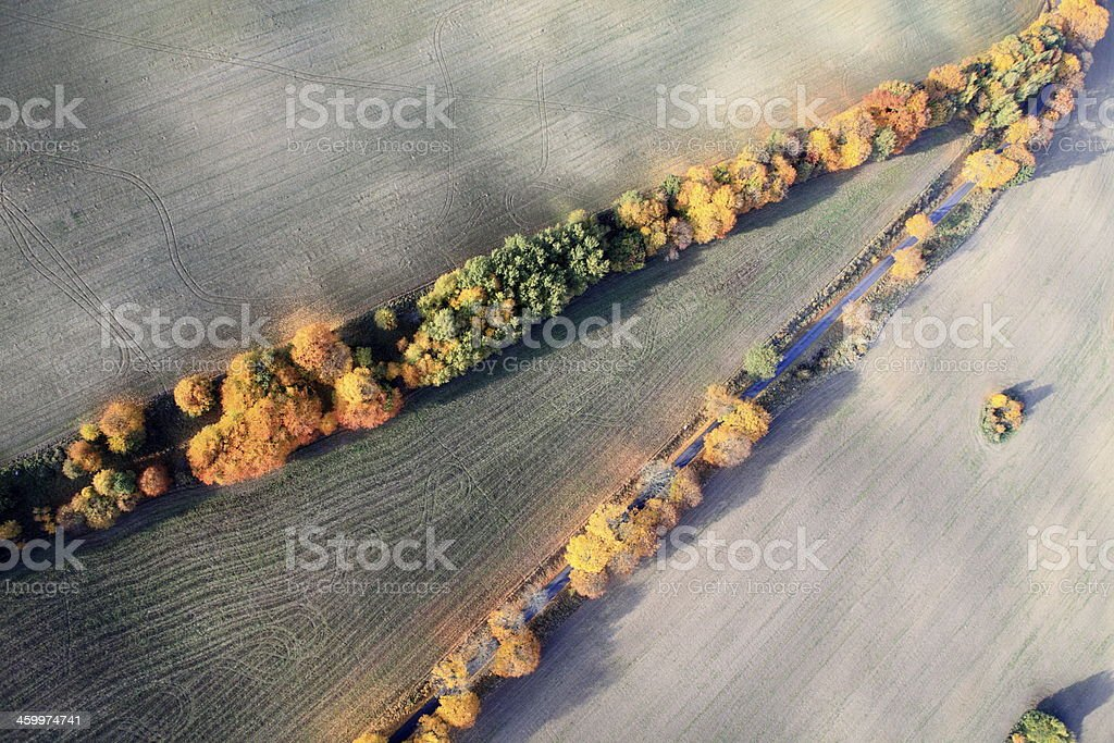 Aerial photo of a autumn trees royalty-free stock photo