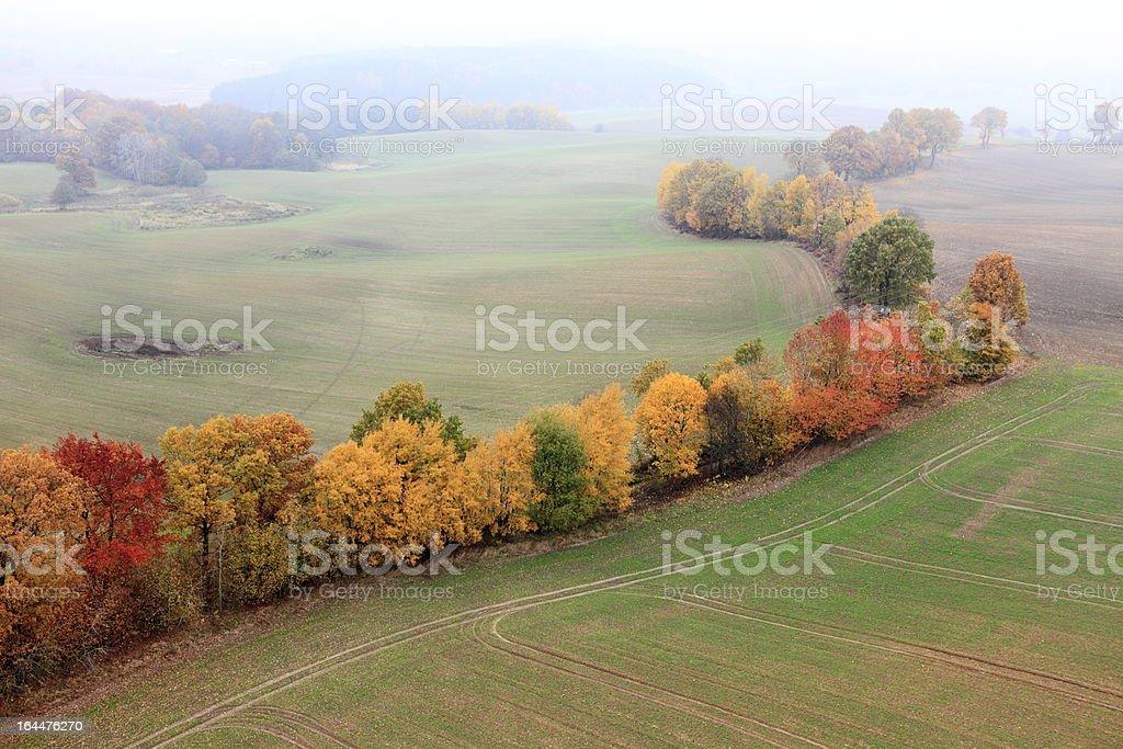 Aerial photo of autumn trees royalty-free stock photo