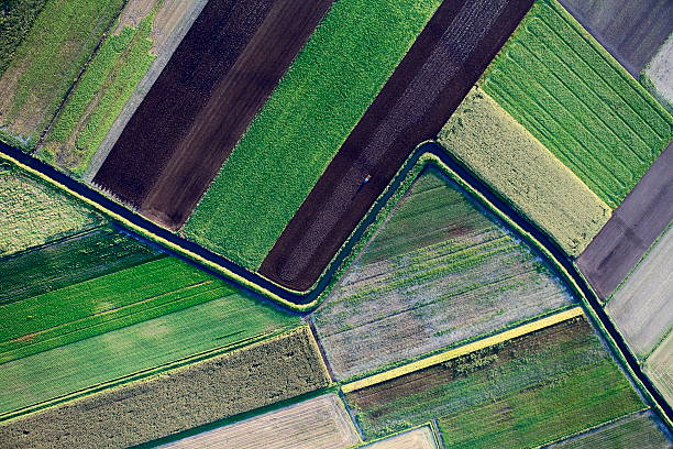 Aerial photo of farmland geography Aerial view of cultivated fieldshttp://marcinskiba.nazwa.pl/darek/farmland.JPG oat crop stock pictures, royalty-free photos & images