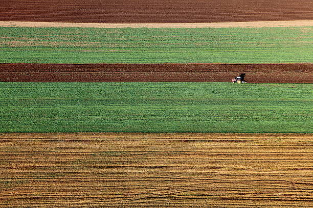 Aerial photo of Farmland Aerial view. Poland, Pomeranian province Tczewhttp://marcinskiba.nazwa.pl/darek/farmland.JPG cultivated land stock pictures, royalty-free photos & images
