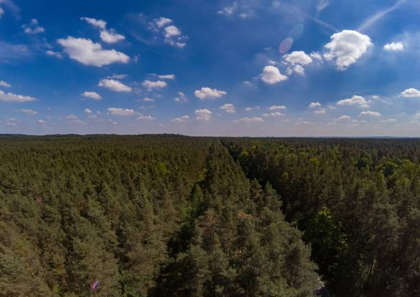 Aerial photo of forest landscape called Tennenloher Forst near the village Tennenlohe, Germany Aerial photo of forest landscape called Tennenloher Forst near the village Tennenlohe, Germany erlangen stock pictures, royalty-free photos & images
