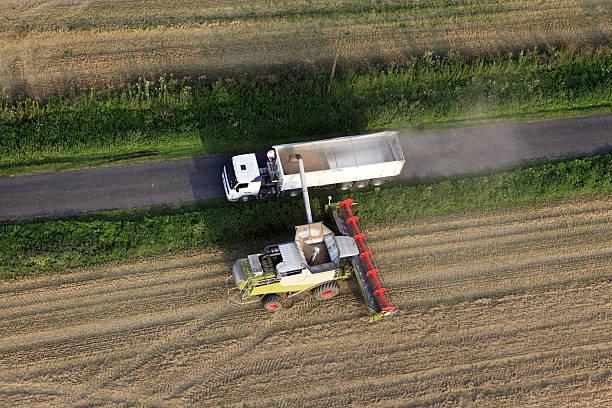 Aerial photo of grain harvest stock photo