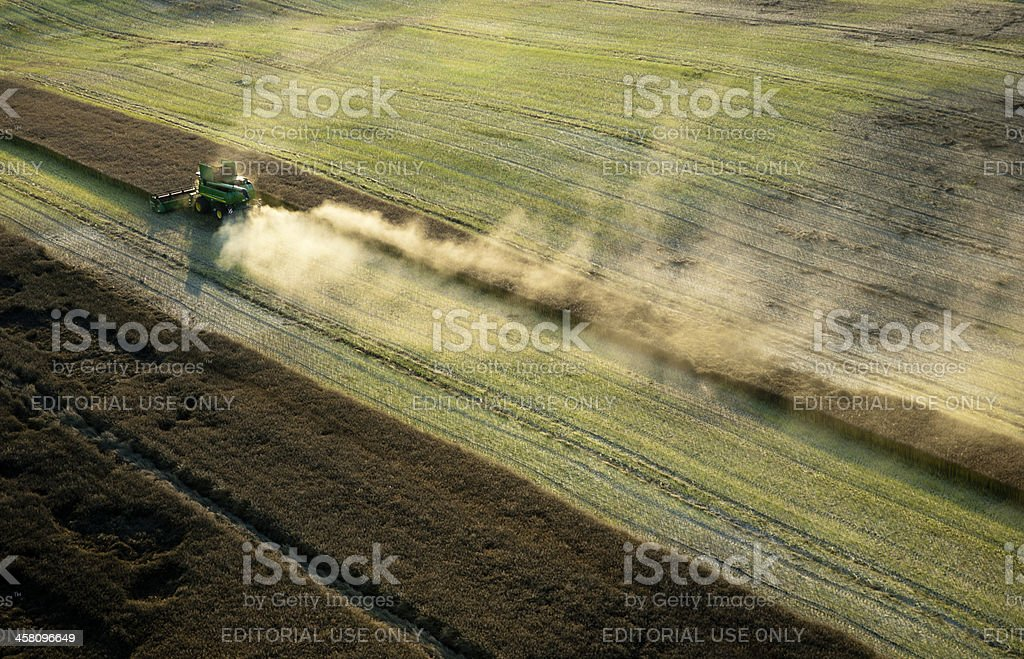 Aerial photo of rapeseed stock photo