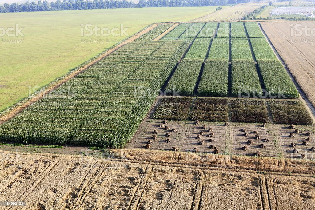 aerial photograph of the experimental crops stock photo