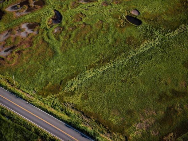 Luftaufnahmen von Maines Sumpfgebieten (USA) – Foto
