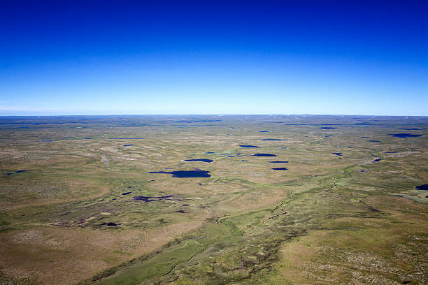 fotos aérea do ártico tundra zonas húmidas - tundra imagens e fotografias de stock