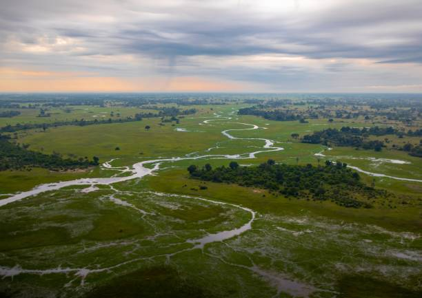 Aerial picture of the Okavango Delta in Botswana during summer period stock photo