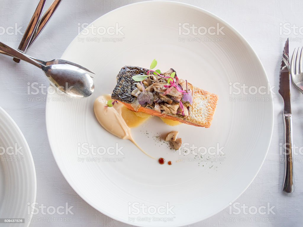 aerial salmon modern dish stock photo