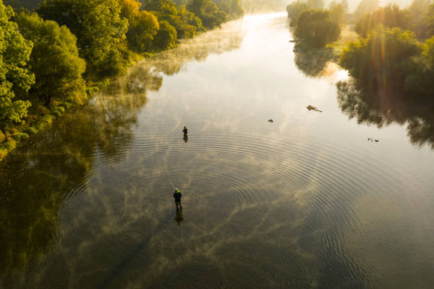 Aerial shot of a man fly fishing in a river during summer morning. Aerial shot of a man fly fishing in a river with a fog during summer morning. casting stock pictures, royalty-free photos & images