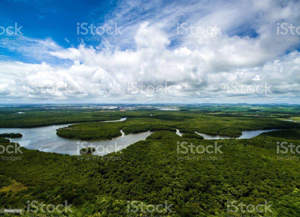 Aerial Shot of Amazon rainforest in Brazil, South America Aerial Shot of Amazon rainforest in Brazil, South America Above Stock Photo