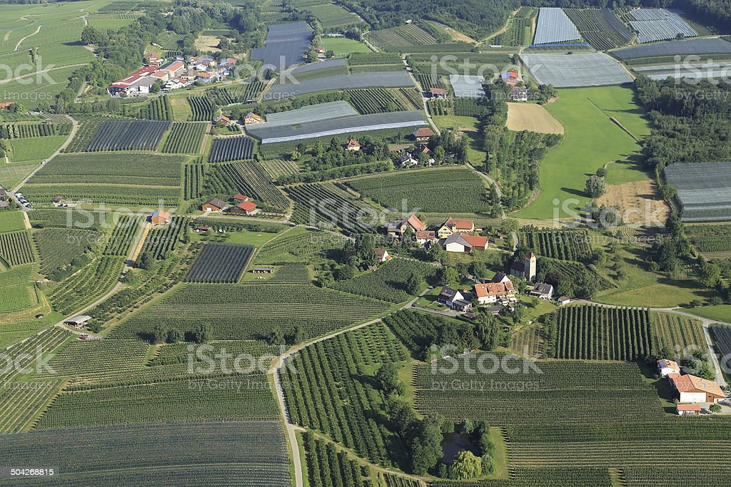 Aerial shot with apple orchards and vineyards. stock photo