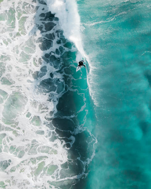 aerial sport action shot of a surfer at sunrise riding a wave in a blue ocean in sydney, australia bondi beach - fala przybrzeżna zdjęcia i obrazy z banku zdjęć