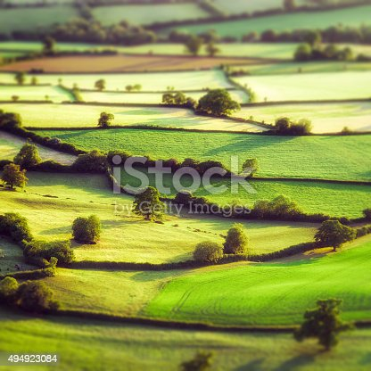 Evening aerial view of summer fields divided by traditional hedges in Somerset, England.  Tilt-shift technique used.