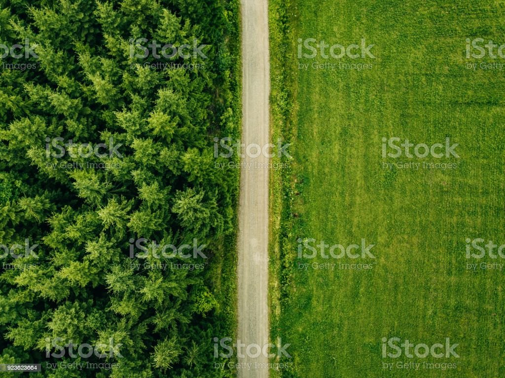 Aerial top view of a country road through a fir forest and a green field in summer stock photo