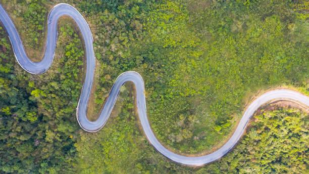 森林中道路的頂頂部視圖 - 曲線 個照片及圖片檔