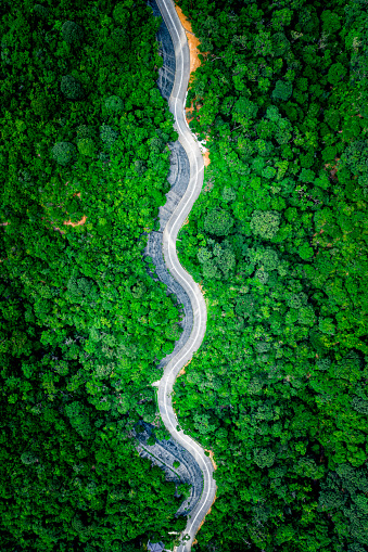 Aerial top view of country road in green summer forest. Rural landscape in Hong Kong