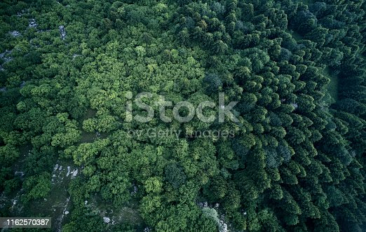 923623146 istock photo Aerial top view of spring in forest in rural 1162570387