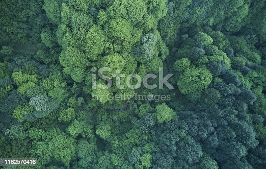 923623146 istock photo Aerial top view of spring in forest in rural 1162570416