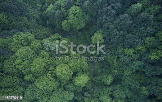 923623146 istock photo Aerial top view of spring in forest in rural 1162570419